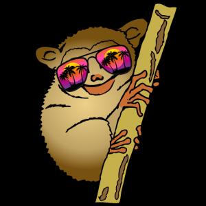 Koboldmaki Maki Lustiges Tier Geschenk Tierpfleger