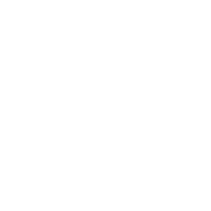 Vogelschwarm Freiheit freedom Vogel Voegel weiss