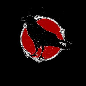 Raven - Crow - Rabe - Krähe