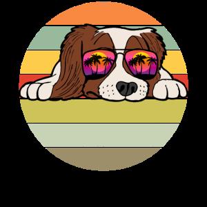 Cocker Spaniel Hund Sonnenbrille Lustig Geschenk