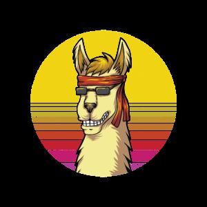 Vintage Lama Alpaka mit Stirnband und Sonnenbrille
