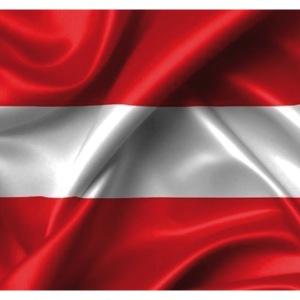 AUSTRIA FLAG MASK