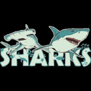 Fan of Sharks