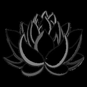 Schwarze Lotusblume
