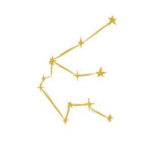 Sternzeichen Wassermann horoskop geschenk