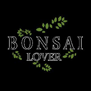 Bonsai Baum Liebhaber Natur Kunst Zen