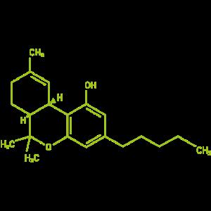 die Moleküle