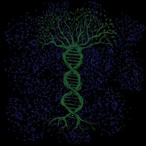 Baum des Lebens,Genetik DNA Naturschutz Biologie