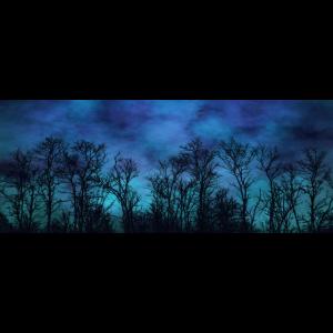 Panoramatasse Wald