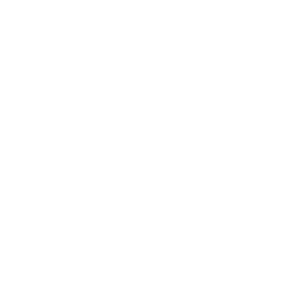 Computer Vintage