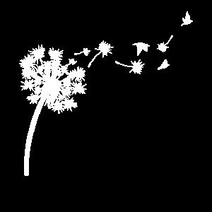 Pusteblume Blume Natur Traum Vogel fliegen