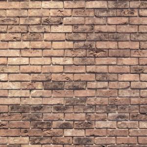 Die Mauer des Schweigens Maske Mundschutz