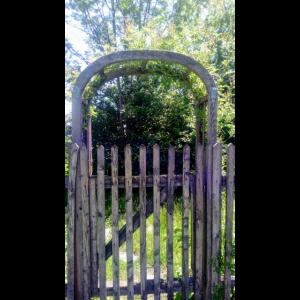 Eingang Garten Tor