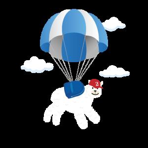 Fallschirm Alpaka Fallschirmsprung Geschenk