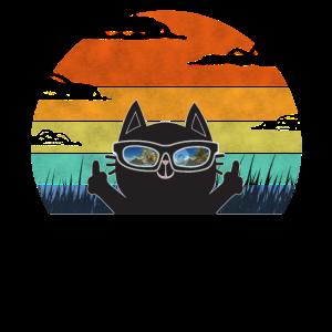 Katze Mittelfinger Sonnenbrille Katzen