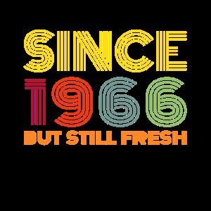 1966 Retro