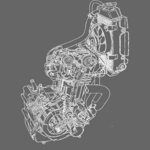 nx250 motorblok wit