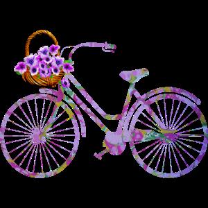 fahrrad e 230 mit blumen