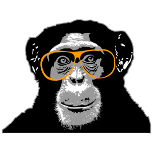 Schimpanse - Affe
