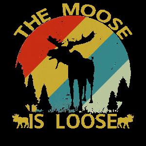Der Elch ist locker