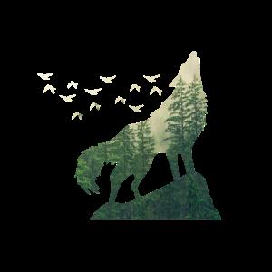 Umweltschutz Klimaschutz Wolf Wald Natur Retten