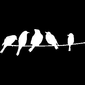 Vögel auf einem Kabel