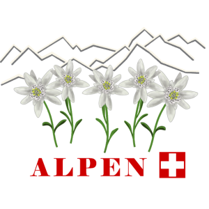 Alpen, Edelweiss, Schweiz