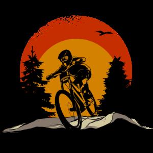 Mountainbike Fahrrad Downhill Natur Bike MTB Biker