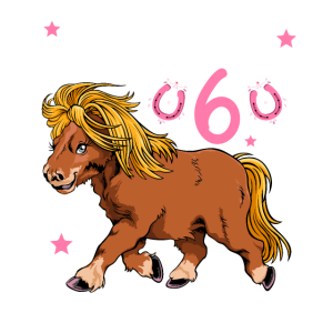 Kinder 6. Geburtstag Mädchen Pferde Shetty
