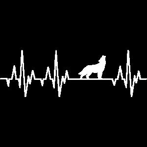 Wolf Herzschlag Wölfe EKG