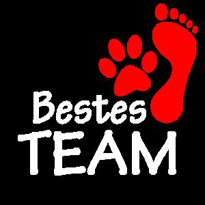 Ich Hund Team Mein Hund und Ich bestes Team