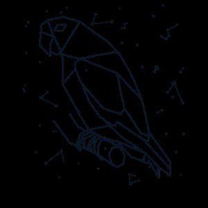 Sternbild Papagei Sternzeichen Vogel Sterne