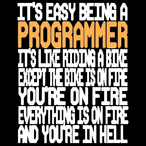 Programmierer
