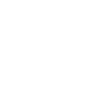 """""""Guessing the own password"""" 