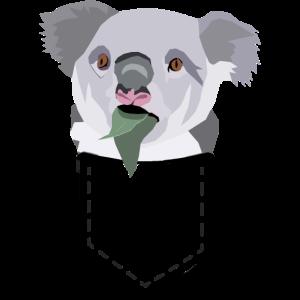 Koala in a Pocket