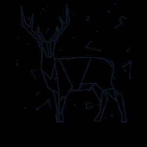Sternbild Hirsch Sternzeichen Sternenhimmel