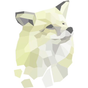 Fox Framents
