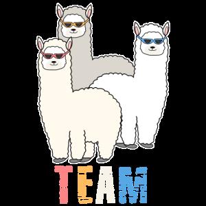 Alpaka Lama Team Crew