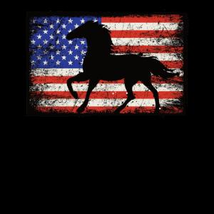 PFERD USA US Amerika