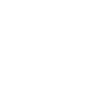Rose One Line Illustration