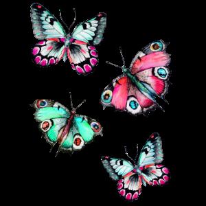 Der Flug der Schmetterlinge