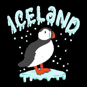 Island Papageientaucher