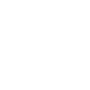 palmen symbol palme icon