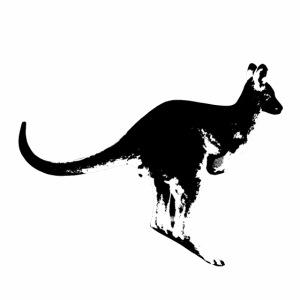 Känguru in schwarz weiss