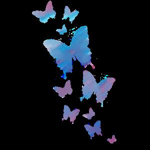 Schmetterling Schmetterling Tier bunt Farbe