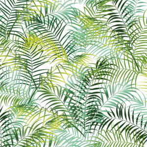 Tropical leaves Dschungel Pflanze Muster grün