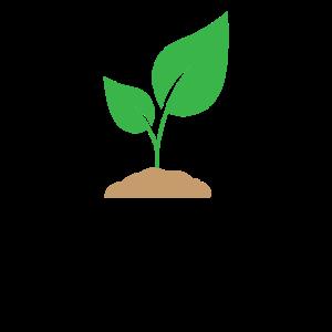 Bio Energie Pflanze Umwelt Recycling