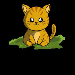 Katze Kätzchen