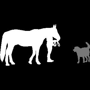 Pferde - Reiten - Hund - Pferd - Hunde - Reiterin