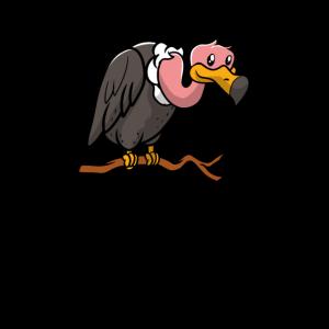 Geier Greifvogel